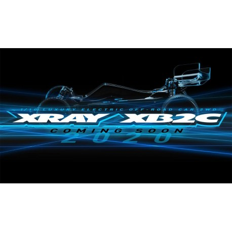 XRAY XB2 2020 - 2WD 1/10 ELECTRIC OFF ROAD CAR - CARPET EDITION